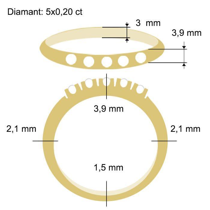 Diamantring Iselin med 5x0,20 ct TW-Si-85050200