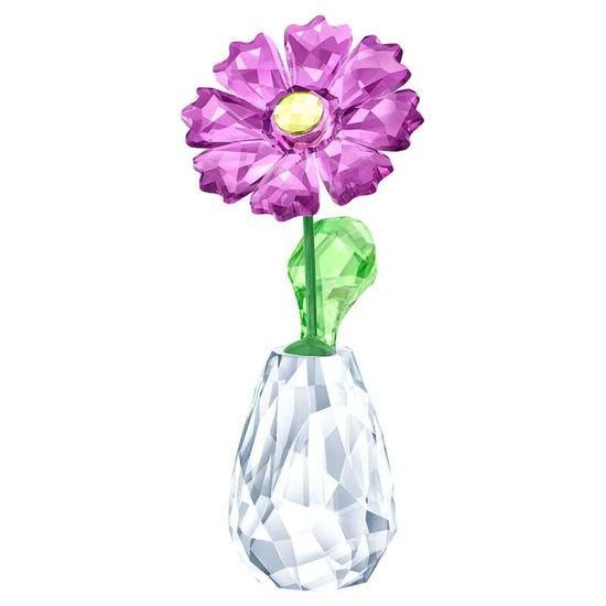 Swarovski figurer. Flower Dreams - Gerbera - 5439225