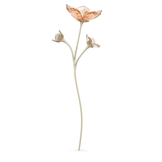 Swarovski figur Garden Tales Magnolia - 5557799